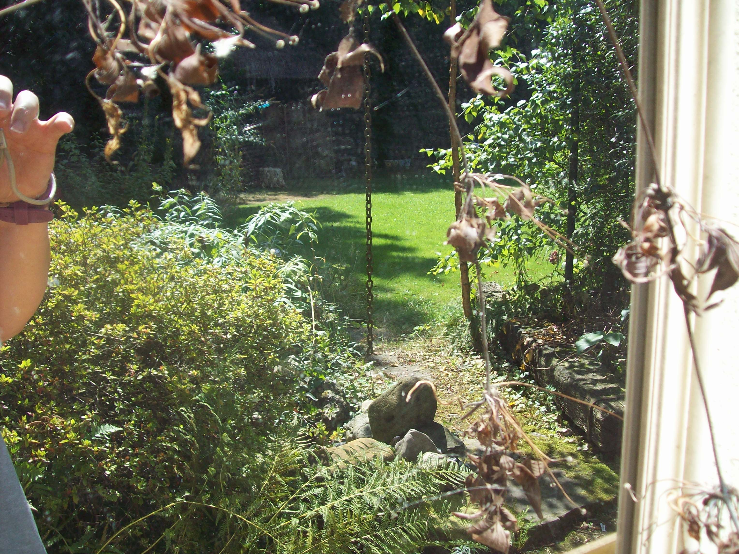Der Garten im Spiegel
